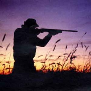 Referendum sulla caccia: le strabilianti dichiarazioni del vice presidente del VCO Preioni